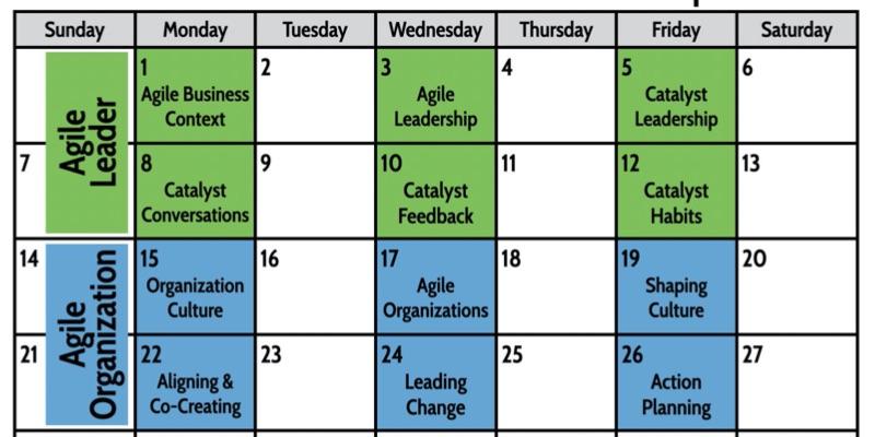 ALJ_Online_Agile_Leadership_Awareness_Workshops_pdf__page_6_of_20_